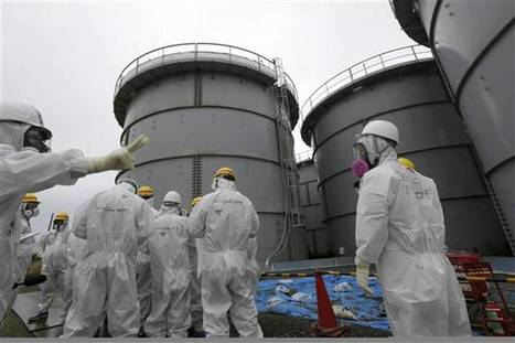 Japan audit: Millions of dollars wasted in Fukushima cleanup | Japan Tsunami | Scoop.it