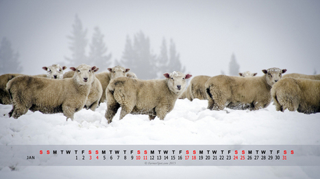 Free Farming & Homestead Calendar PC Wallpaper - January 2015 | Farming and the Countryside | Scoop.it
