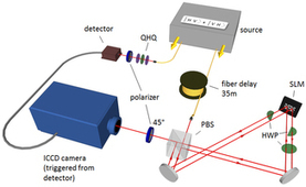 Real-Time Imaging of Quantum Entanglement : Scientific Reports : Nature Publishing Group | The promised land of technology | Scoop.it