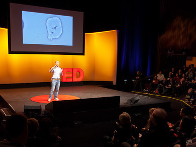 Damian Palin: #Mining #minerals from #seawater | Video on TED.com | Commodities, Resource and Freedom | Scoop.it