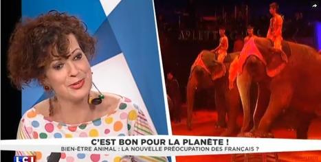 Bien-être animal : la nouvelle préoccupation des Français • Néoplanète | Biodiversité | Scoop.it