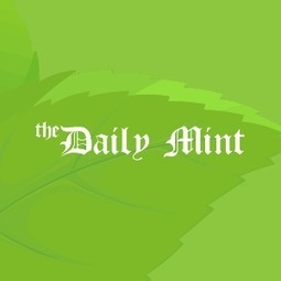 The Daily Mint - Fail fast, manage more projects by Mário H Trentim | The Daily Mint | Scoop.it