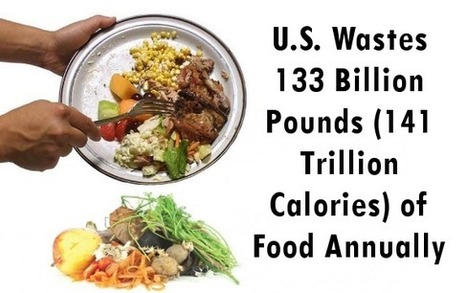 "US Wastes 133 Billion Pounds, or 141 Trillion Calories, of Food Annually (""scandalously wasteful"") 