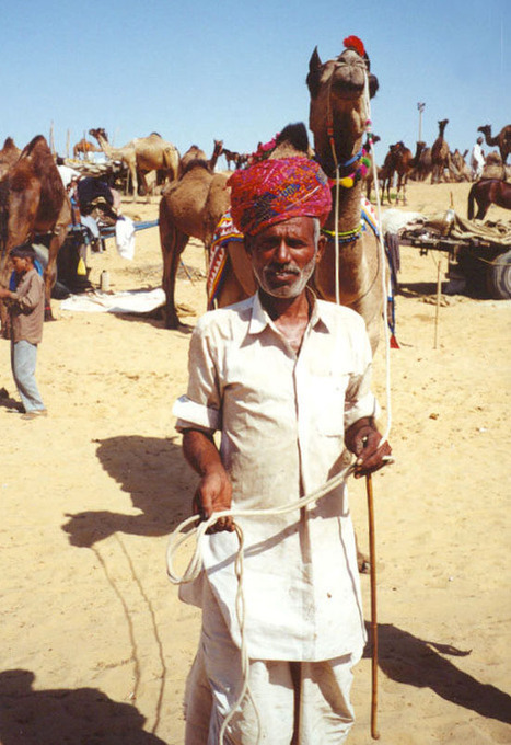 Pushkar Camel Fair in India | Year 3 History: National Days and Celebrations - India | Scoop.it