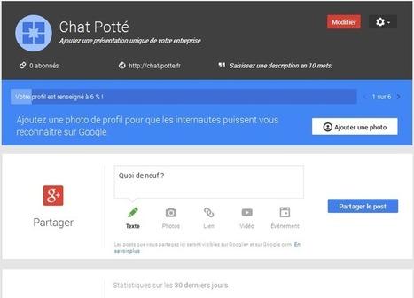 Google Plus pour les nuls : bien débuter sur Google+ | Ressources pédagogiques numériques pour l'informatique et les TIC | Scoop.it