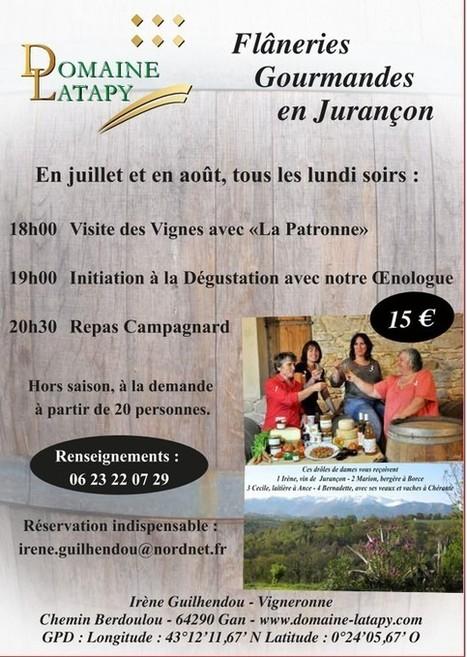 Flâneries Gourmandes 2014 en Jurançon   vue sur les Pyrenees   Scoop.it