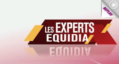 Replay > Les experts Equidia du 3 avril | Trotting club | Scoop.it