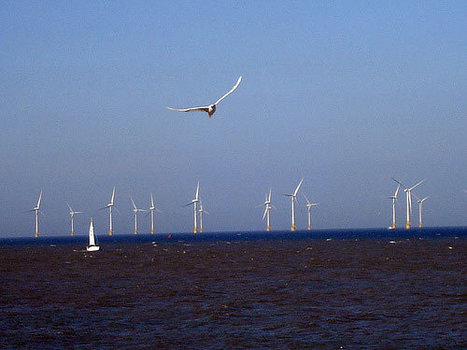 Offshore Wind Could Cool HeatWaves | Sustain Our Earth | Scoop.it