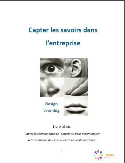 Grain's - Créateur de connaissances: Publication d'un premier livre blanc sur le Design Learning | Grain's Créateur de connaissances | Scoop.it