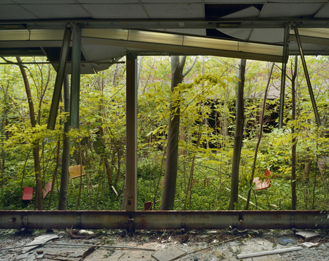 The Ecology of Ruin - Belt Magazine | Dispatches From The Rust Belt | Ruinology | Scoop.it