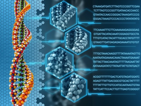 Beyond Cloning: 101 Uses of Synthetic, High-Fidelity, Double-Stranded DNA | DNA editing | Scoop.it