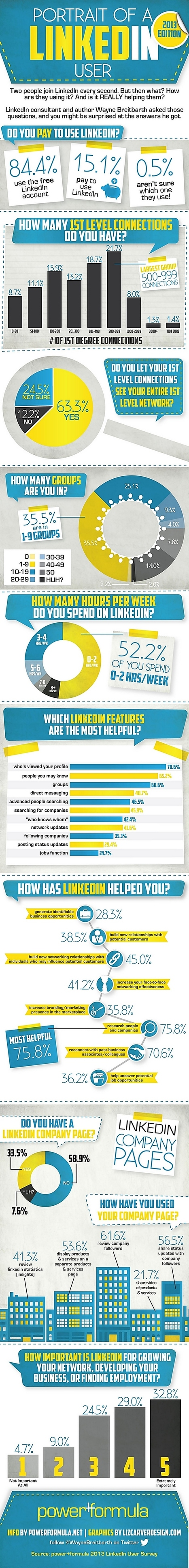 The Portrait of a LinkedIn User in 2013 | Infographic | Marketing, Social Media, E-commerce, Mobile, Videogames | Scoop.it