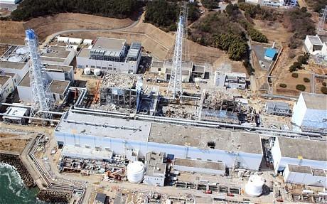 Fukushima nuclear plant worker dies   Japan Tsunami   Scoop.it