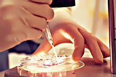 Scientists developing cream to treat skin cancer | Tessa's Yr 9 Journal | Scoop.it