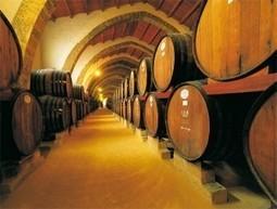 Marsala beste wijnstad van Europa - Italie in Bedrijf   best wines   Scoop.it