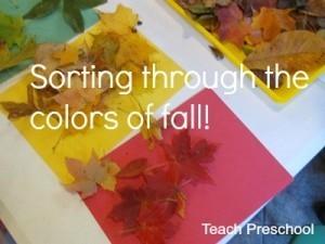 Sorting through the colors of fall | Teach Preschool | Scoop.it