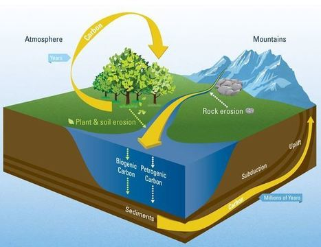 ¿Cómo intervienen los ríos en el ciclo global del carbono? - Noticias   iAgua   Regiones y territorios de Colombia   Scoop.it