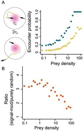 Sensory Information and Encounter Rates of Interacting Species | great4home | Scoop.it
