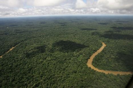 Ecuador's congress authorizes oil drilling in Yasuni reserve in Amazon | Periodismo Digital | Scoop.it