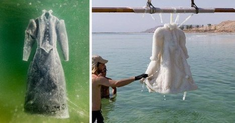 Artist Submerges Dress in Dead Sea for Three Months, Retrieves a Beautiful Salt Crystal | Oddity Central - Collecting Oddities | Human Writes | Scoop.it