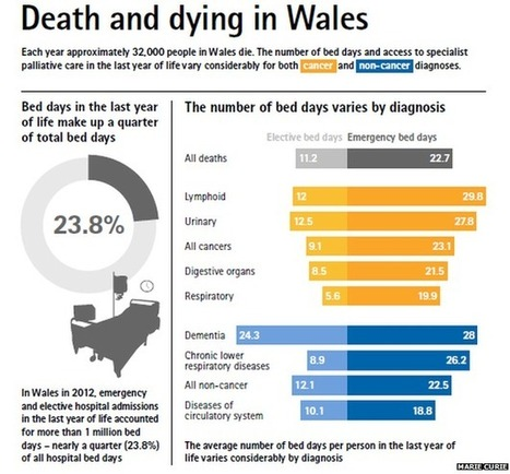 Low palliative care use highlighted | Palliative care | Scoop.it