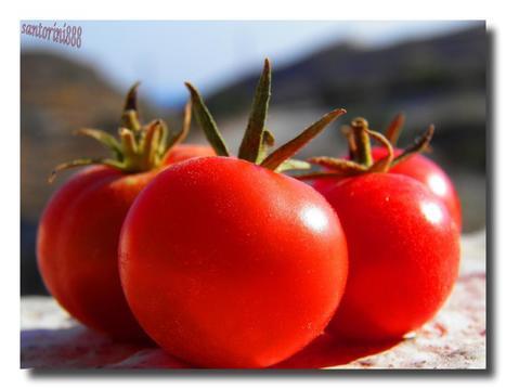 Restaurants in Santorini | Summer Vacations to Santorini at Greece | Scoop.it