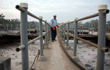 Narendra Modi, Favoring Growth in India, Sweeps Away Environmental Rules - NYTimes.com   Environment   Scoop.it