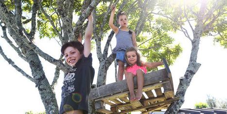 Bringing risk back into children's lives - National - NZ Herald News   Bubble Wrap Revolution   Scoop.it