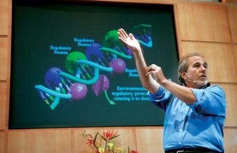 Los pensamientos curan más que los medicamentos (Bruce Lipton) | Superando el Sida | Scoop.it