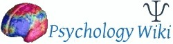 Focusing | Counselling and Psychotherapy | Scoop.it