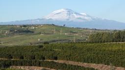 Arancia | Sapori di Sicilia | web marketing | Scoop.it