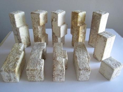 Des maisons construites en briques de... champignons ! | Eco-conception | Scoop.it