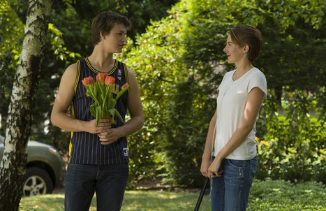 How 'The Fault in Our Stars' became a cult sensation - New York Post   Acting Training   Scoop.it