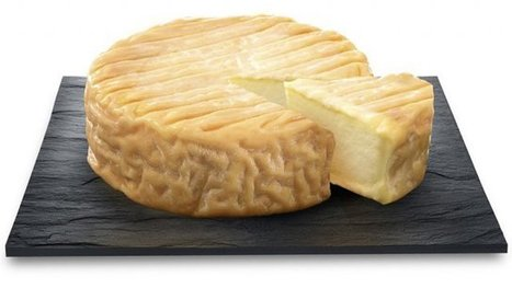 Bourgogne : une journée de l'Epoisses dans les lycées de la région | The Voice of Cheese | Scoop.it