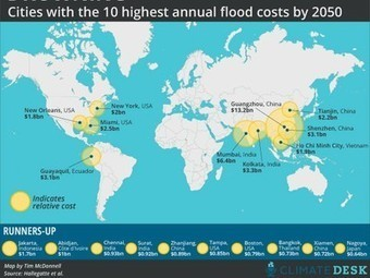 Coastal flooding could cost $1 trillion by 2050, as Task Force warns to prepare for future storms   Sustain Our Earth   Scoop.it