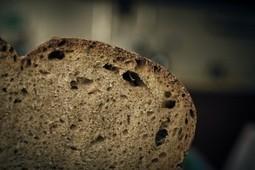Celiachia: studio sull'uso del lievito madre per degradare il glutine | senza glutine | Scoop.it