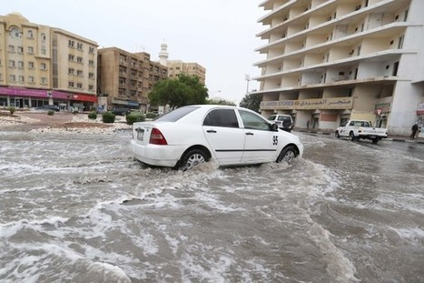 "Des inondations au Qatar et en Arabie saoudite | Climat | ""green business"" 