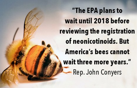 Maryland to Become First State to Ban Bee-Killing Pesticides for Consumer Use | Epicurist: In Victus Veritas | Scoop.it