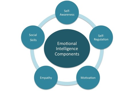 Domains of Emotional Intelligence | Leadership and Spirituality | Scoop.it