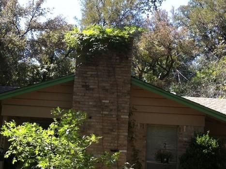 Avoiding a Fire Hazard — J Peterson Garden Design   Annie Haven   Haven Brand   Scoop.it