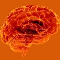 Demanding new skills make ageing minds sharper - Health24.com | Cognitive Ageing | Scoop.it