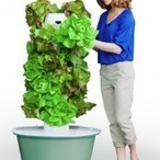 Aeroponics Is the Future of Indoor Gardening! - Urban Organic News|Urban Organic News | Cultivos Hidropónicos | Scoop.it