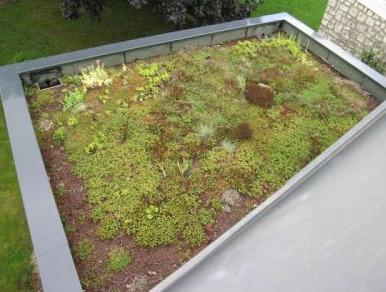 Une toiture végétale : étape par étape | Potager & Jardin | Scoop.it