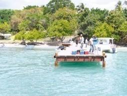 Esperan turismo sostenible siga creciendo entre 10 y 30 por ciento   Totonal and Sustainable Tourism   Scoop.it