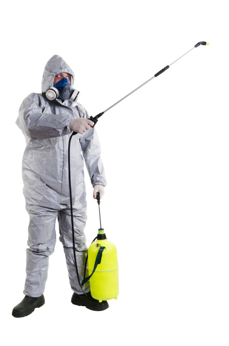 Get more information about Accurate Pest Control. | Pest Control Service | Scoop.it