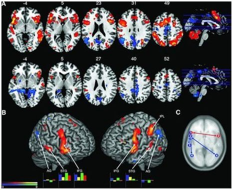 Brain scans of jazz musicians unveil language and music similarities | Neuroscience | Scoop.it