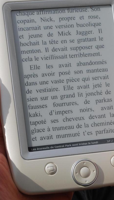 Des liseuses en bibliothèque !   Le livre numérique en Bibliothèque   Scoop.it