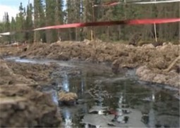 Primrose oil sands summertime leak not yet over | Sustain Our Earth | Scoop.it