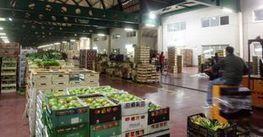 Export italiano di vino verso il record: cinque miliardi nel 2013 - Il Sole 24 ORE | Vino al Vino | Scoop.it