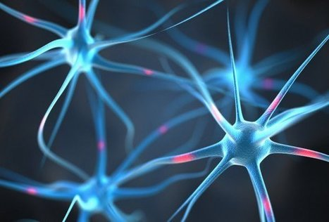 Swedish Scientists Build Artificial Neurons Able to Communicate With Organic Neurons | Hacked | Systems Theory | Scoop.it